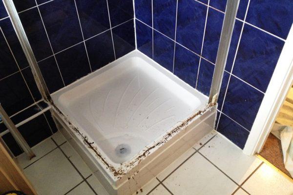 Shower repairing